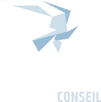 Logo de Frédéric Lallemand (Lallemand Conseil)
